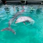 子連れで沖縄旅行3日目:プール&海は無しで沖縄観光へ!